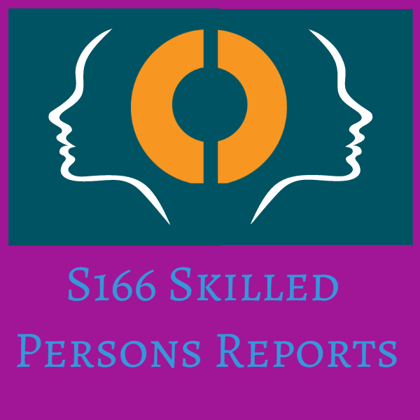 S166 Skilled Persons Reports